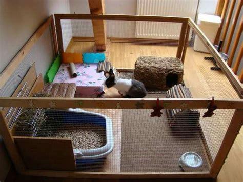 la maison dans la cagne les 25 meilleures id 233 es de la cat 233 gorie enclos lapin sur parc pour lapin parc lapin