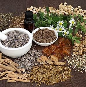 Avena Sativa Testosterone  U0026 Benefits