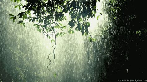 rain wallpapers full hd desktop background