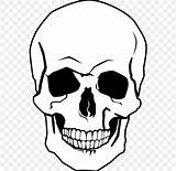 Skull Human Drawing Coloring Calaveras Crossbones Dibujar Dibujos Calavera Colorear Clipart Bone Dibujo Transparent Craneo Halloween Skeleton Subpng Hiclipart Bones sketch template