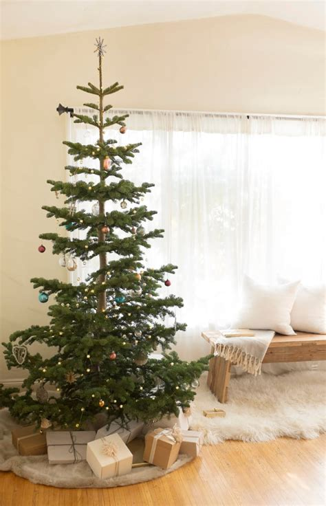 sugar water for christmas tree the best tree for the environment popsugar home