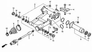 25 Honda Foreman 450 Carburetor Diagram Wiring Diagram.html
