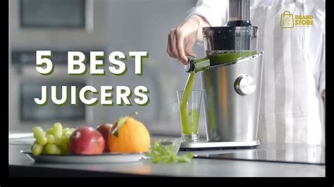 juicer slow juice fruit