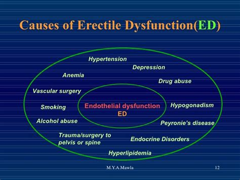 Yousry Endothelial Vs Erectile Dysfunction. Serviced Apartments In Boston. Send Money Online With Your Bank Account. Natural Ways To Get Rid Of Varicose Veins. List Of Air Force Careers Mover New York City. Reputation Management Reviews. Franklin Income Fund Morningstar. Costco Organic Mattress Pci Compliance Hosting. Is Cloud Storage Secure Massage Therapy Class