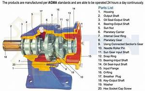 Planetary Speed Reducer Planetary Gear Speed Reducer
