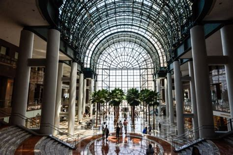 pictures of small palm trees a trip through the brookfield place mall