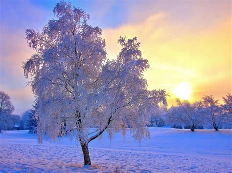 Beautiful Winter Wallpaper by Sunset Lake Michigan Wallpaper 1920x1200 31611