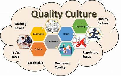Culture Graphic Assessment Change Organizational
