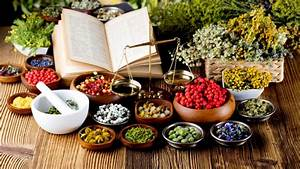 Herbology  Herb