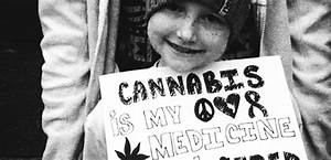 Is Cannabis a Cancer Cure? 4 Studies You Need to Read - News