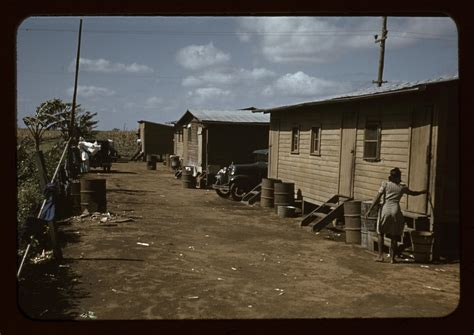 migrant workers housing health   human  race