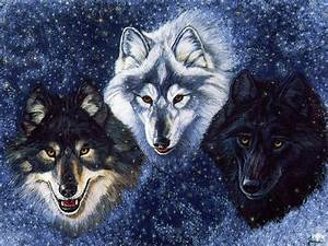 Wolf Fantasy On WolfSpirits Amazing Picture Share On