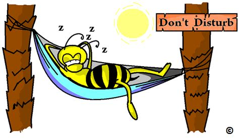 bee warned bees only work the day shift in the land of the