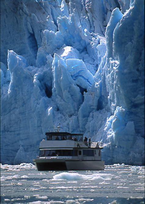 Tracy Arm Fjord & Glacier Explorer - Allen Marine Tours