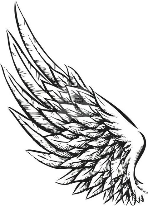 Best Wings Drawing Ideas And Images On Bing Find What You Ll Love
