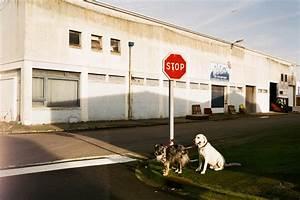 Panneau Stop Paris : 8 questions for paris photographer isa gelb the image ~ Melissatoandfro.com Idées de Décoration