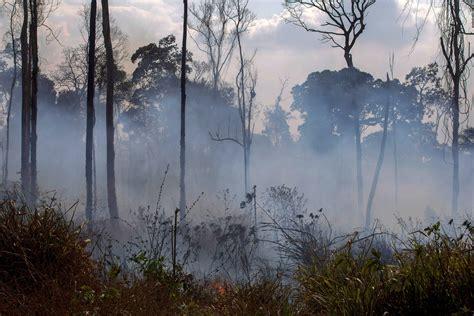 amazon rainforest fire   spot inaccurate