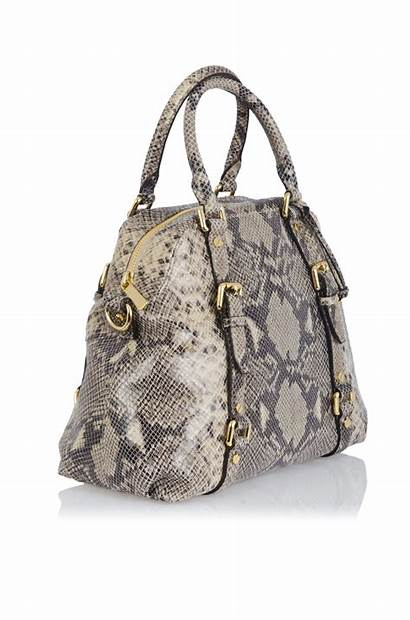 Python Burmese Skin Handbags Growing Trends Fall