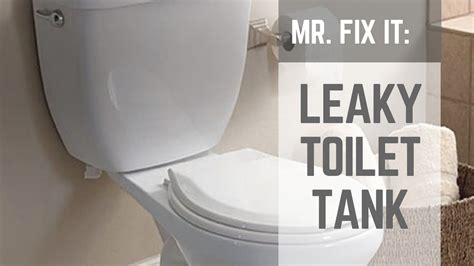 How To  Fix A Leaky Toilet Tank Nuts & Bolts Youtube