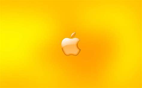 ภาพพื้นหลัง โทนสีเหลืองสดใส