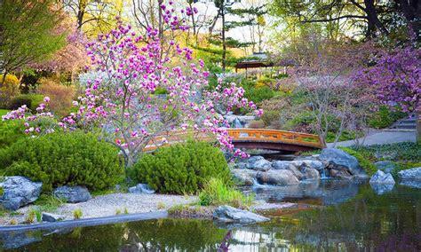 renovation cuisine bois créer un jardin japonais