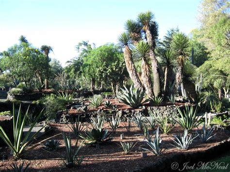 Jardín Botánico, Un Verdadero Paraìso Postcocktail