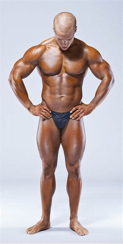 Dick Bodybuilder Perfect Erect Relaxed Berg Robert