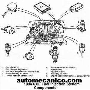jaguar xj6 1979 wiring diagram jaguar free engine image With jaguar x type water pump diagram free download wiring diagram