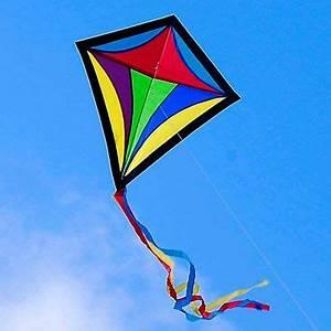 kite flying day essay