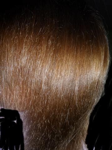 haare trocken und strohig trockene strohige br 252 chige haare