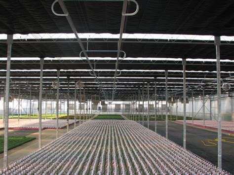 you need curtain systems in your commercial greenhouse
