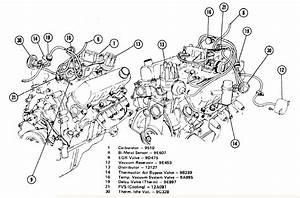 I Need A Vacuum Line Diagram For A 1976 Mercury Capri 2 8l V6 Manual Transmission 2 Bll Carb