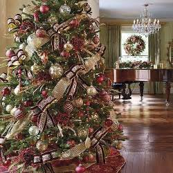 the five most popular christmas trees arbor day foundation blog