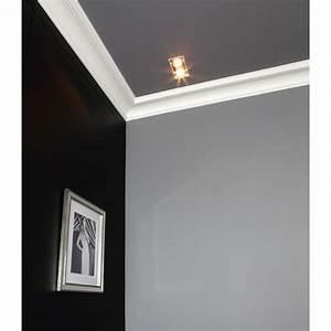 Corniche Plafond Platre : corniche en pl tre pour plafond bas ~ Edinachiropracticcenter.com Idées de Décoration