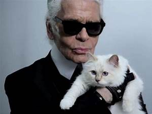Choupette Chat Karl : choupette le chat le plus riche du monde luxisto ~ Medecine-chirurgie-esthetiques.com Avis de Voitures