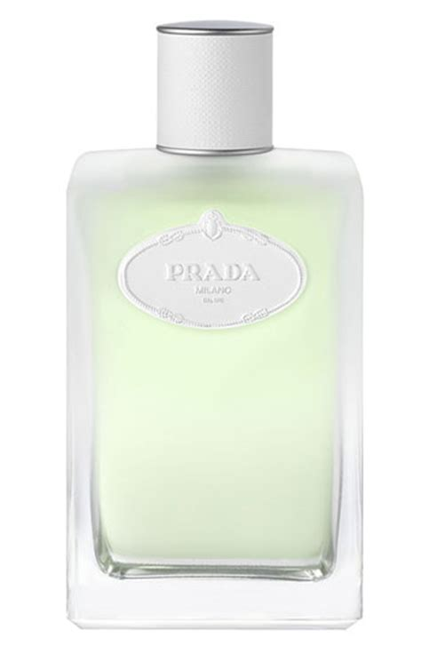 review prada infusion d iris l eau d iris for