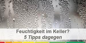 Feucht Werden Tipps : kellerr ume frostfrei und trocken halten 5 tipps ~ Lizthompson.info Haus und Dekorationen