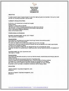 Professional Curriculum Vitae    Resume Template For All