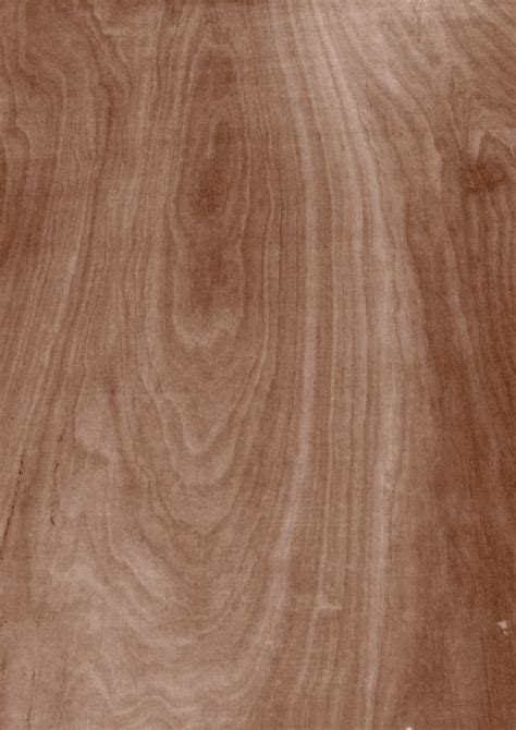 redwood flooring pros and cons wood decking ipe wood decking pros and cons