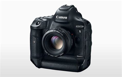 best dslr for photography best dslr cameras for wildlife photography outdoor