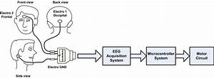 Integrating Neural Signal And Embedded System For