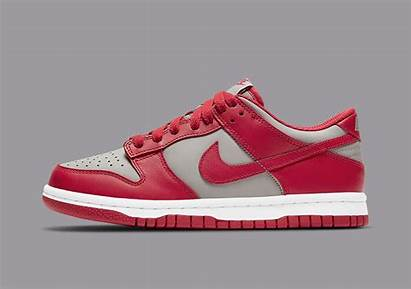 Dunk Nike Low Unlv Grey Varsity Medium