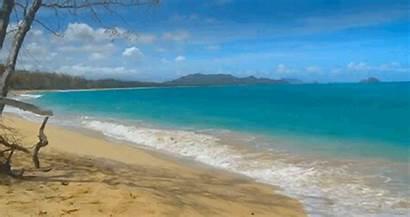 Summer Animated Beach Sea Waves Giphy Gifs