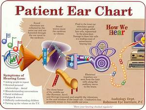 Robinson Eye Institute  P C   U0026quot Patient Ear Chart U0026quot