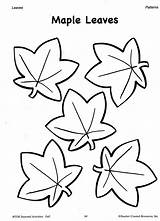 Leaf Traceable Patterns Coloring Leaves Fall Printable Printables Popular sketch template