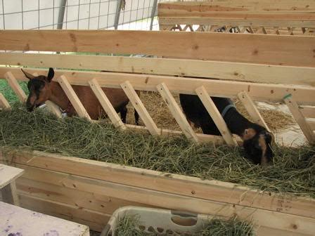 goat hay rack anyone with pics plans of large hay feeders the goat