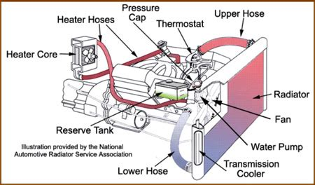 Diagram System Vehicle Cooling by Cooling System D And R Automotive