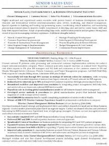 best resume sles pdf executive resume template latest information