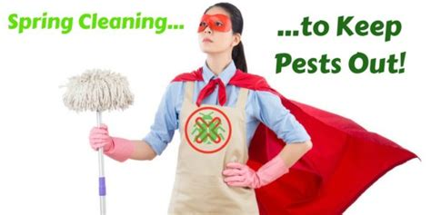 Spring Cleaning To Keep Pests Out  Plunkett's Pest Control