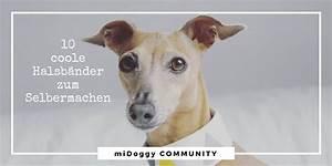 Richtig Coole Bilder : 10 coole halsb nder zum selbermachen midoggy community ~ Eleganceandgraceweddings.com Haus und Dekorationen